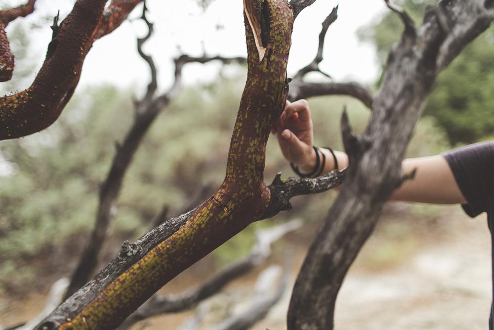 julia-trotti_yosemite_40.jpg
