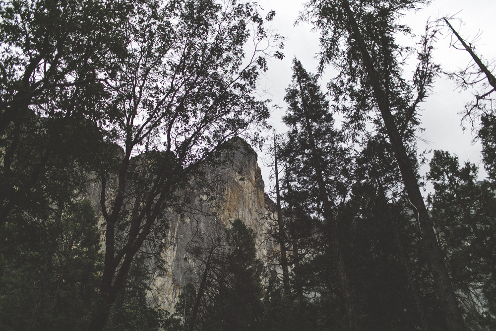 julia-trotti_yosemite_54.jpg