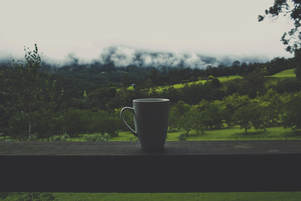 Sipping on coffee, no sounds other than birds and water falling off the nearby mountains to be heard.