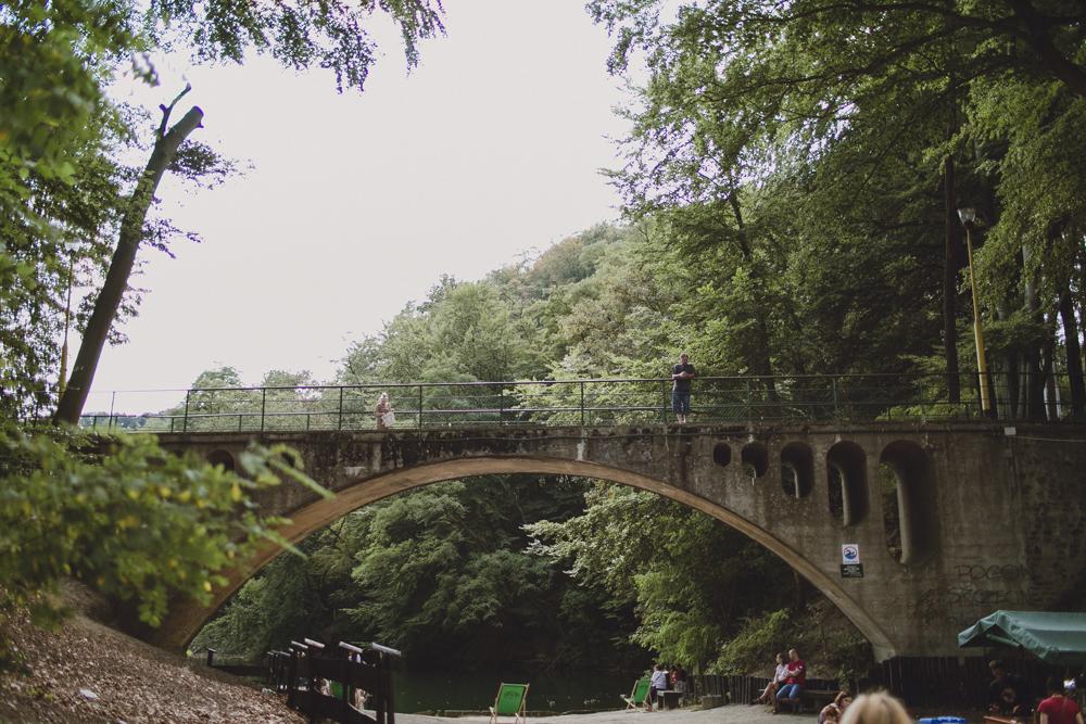 julia-trotti_crooked-forest_029.jpg
