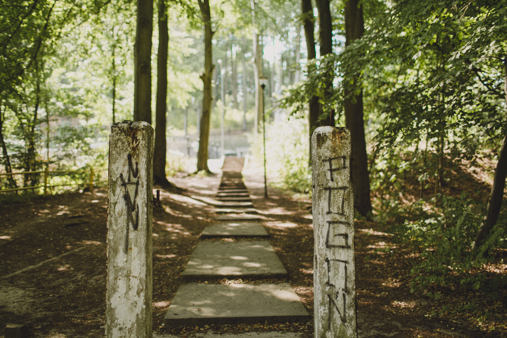 julia-trotti_crooked-forest_030.jpg