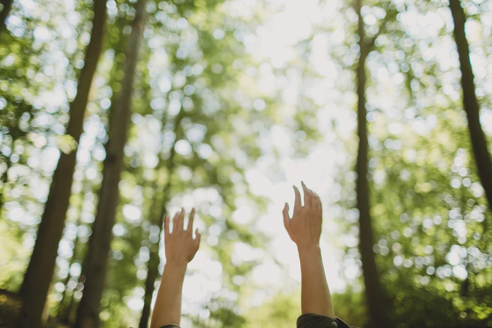 julia-trotti_crooked-forest_036.jpg