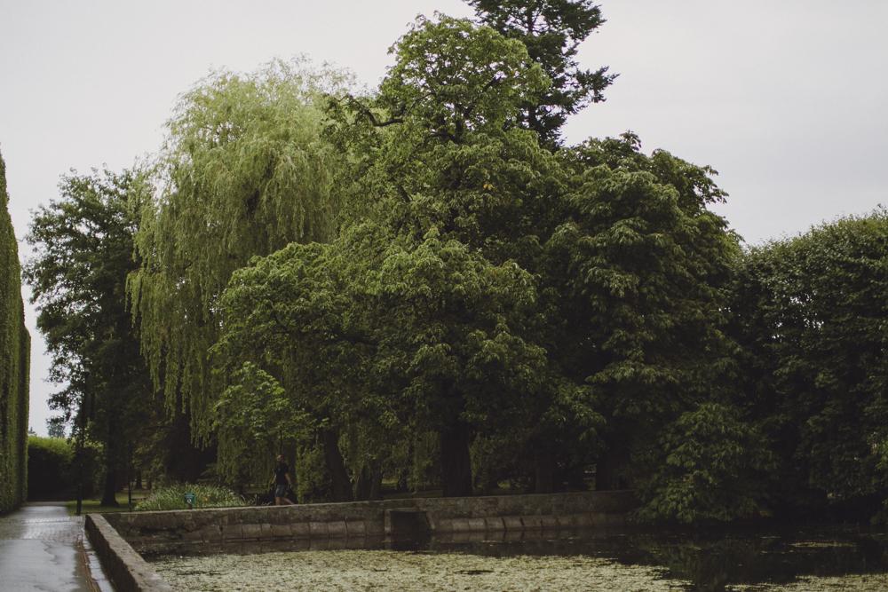 julia-trotti_oliwa-park_031.jpg