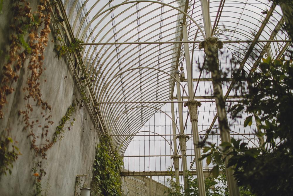 julia-trotti_dublin-botanic_014.jpg