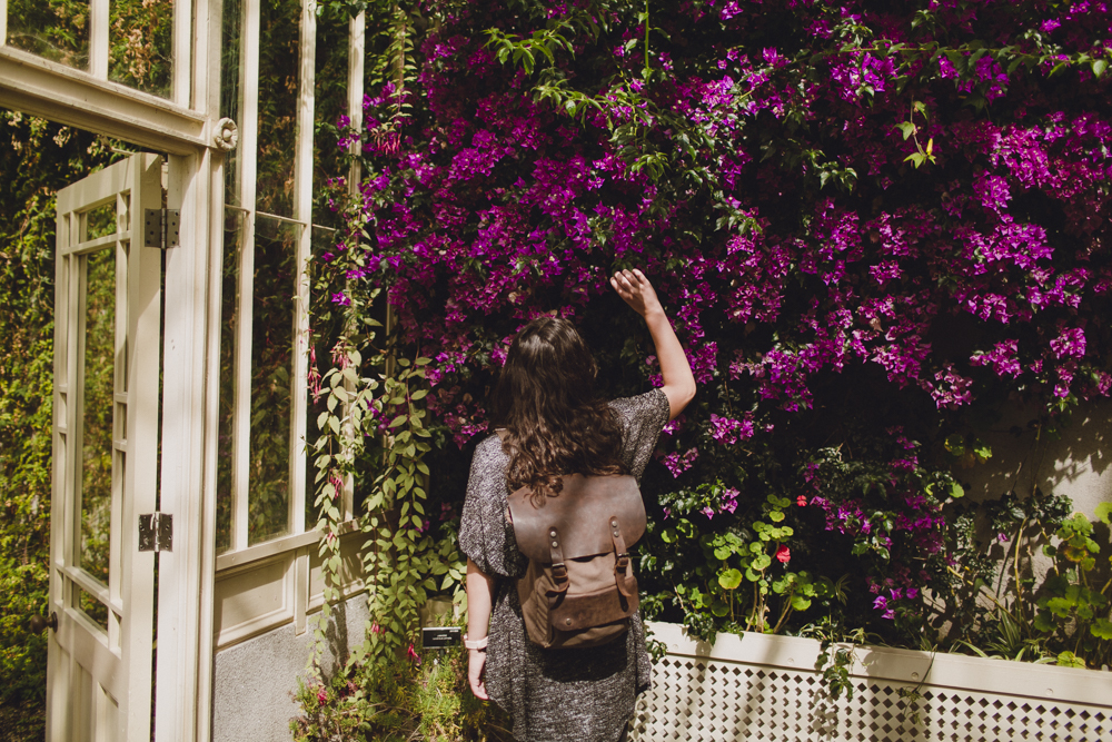julia-trotti_dublin-botanic_018.jpg