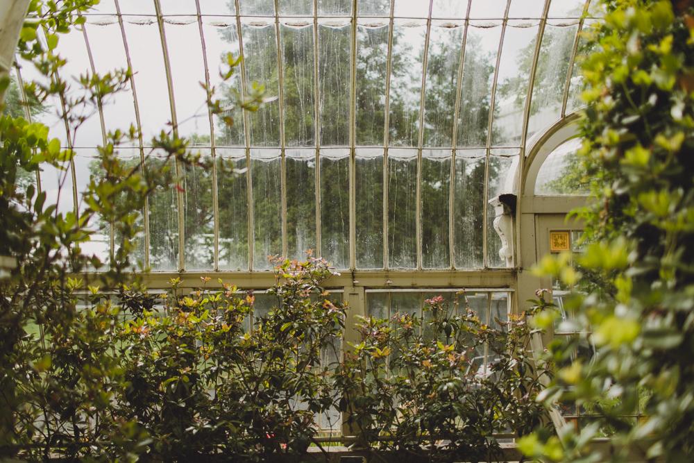 julia-trotti_dublin-botanic_023.jpg