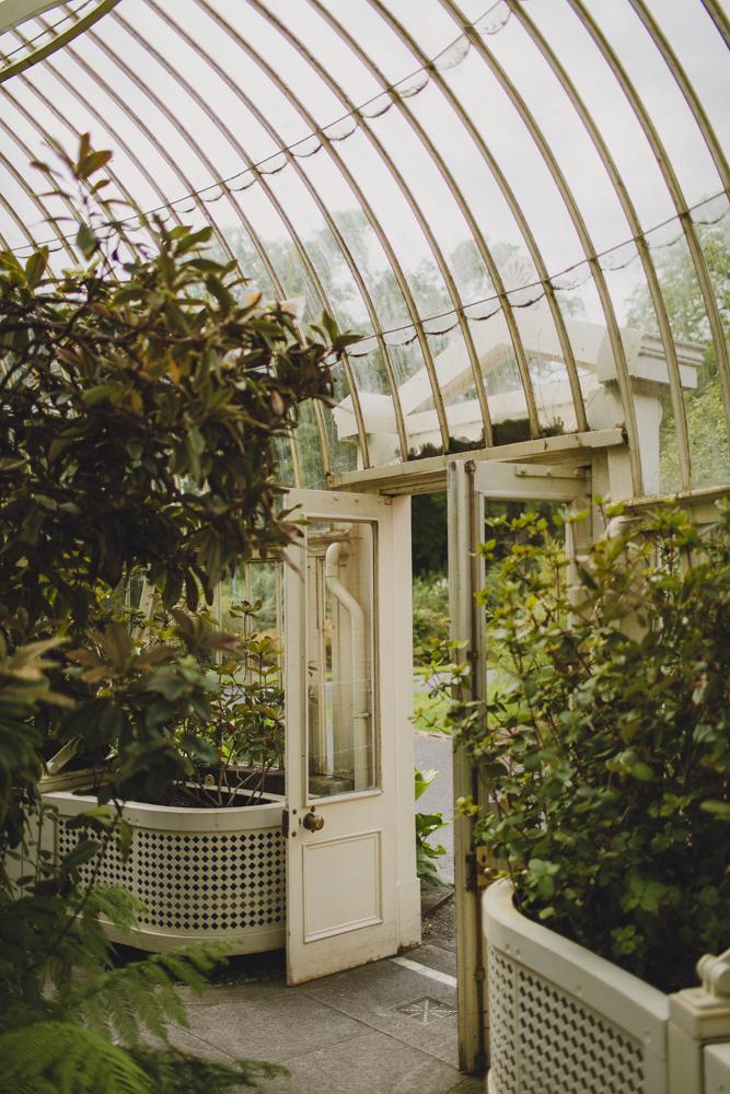 julia-trotti_dublin-botanic_025.jpg