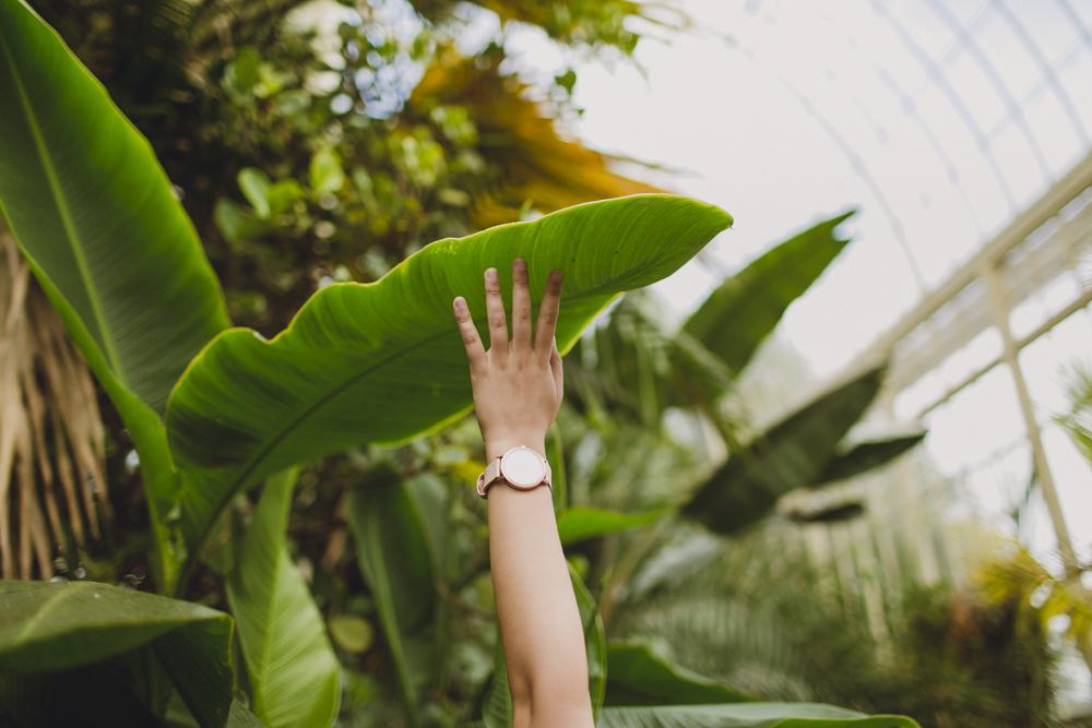 julia-trotti_dublin-botanic_030.jpg