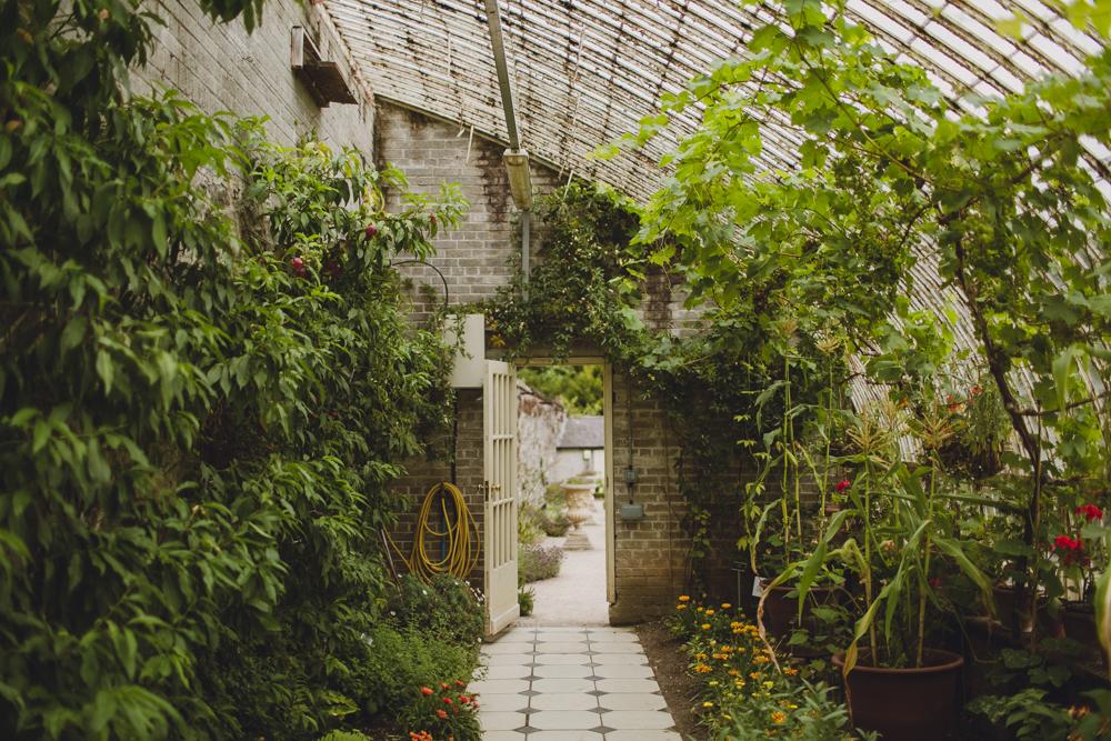 julia-trotti_dublin-botanic_041.jpg