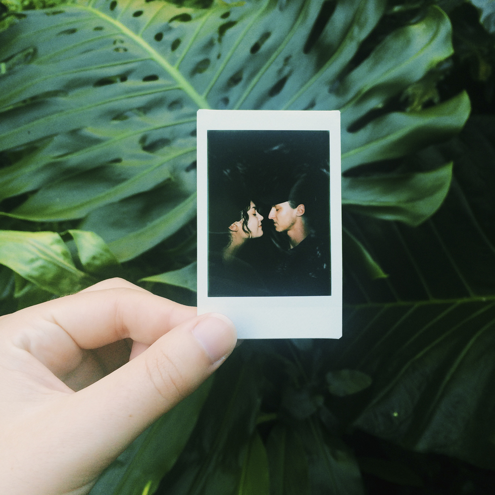 Polaroids at Waimea Valley.