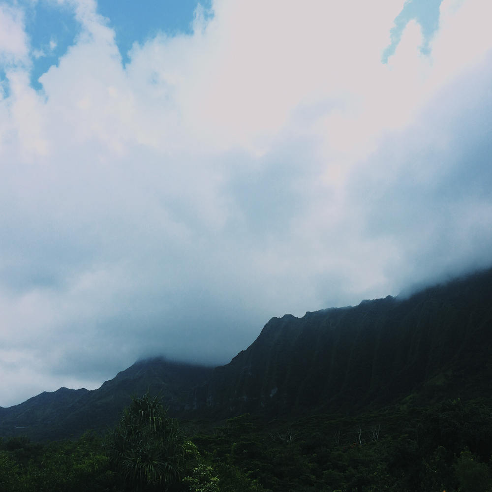 Ho'omaluhia Botanical Gardens - so beautiful with the lush mountain towering around it.