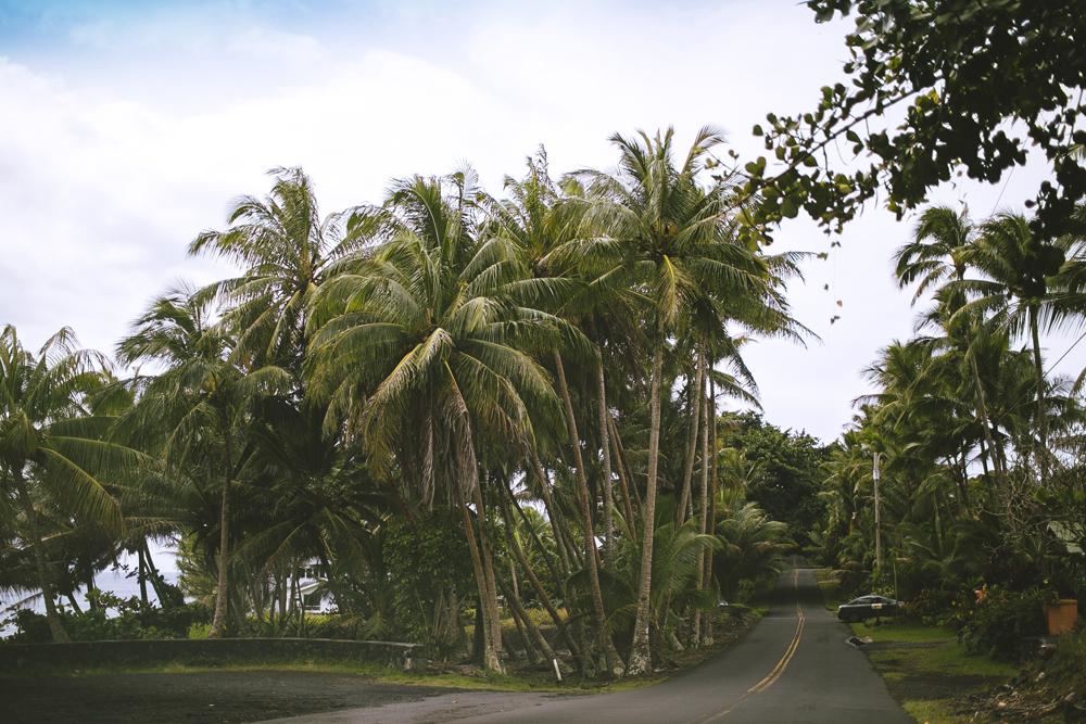 hawaii_003.jpg