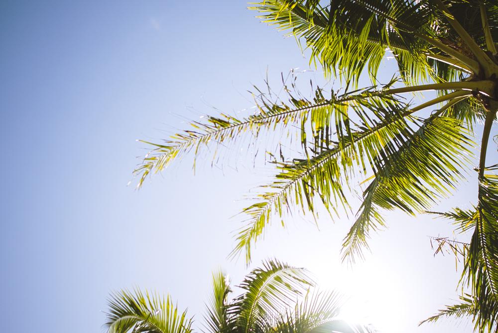 hawaii_085.jpg