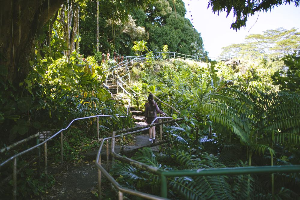 hawaii-waterfalls_003.jpg