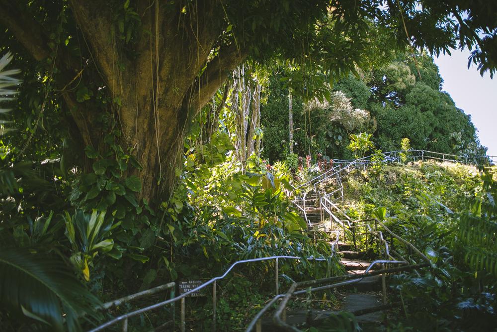 hawaii-waterfalls_007.jpg