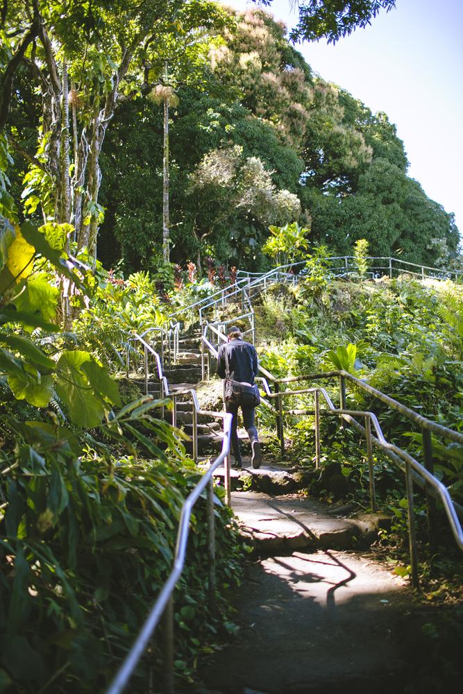 hawaii-waterfalls_008.jpg