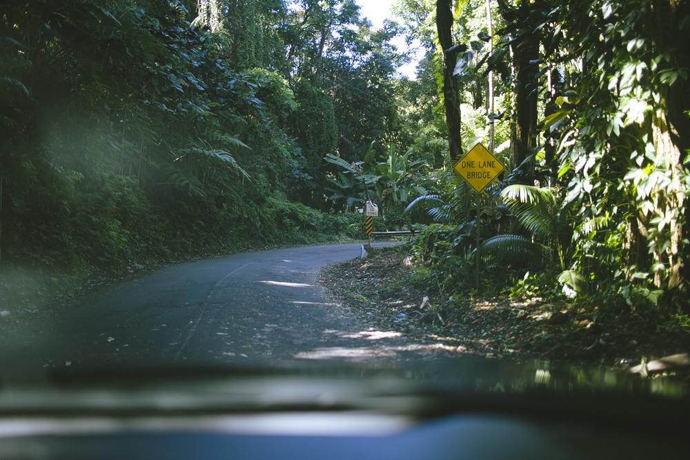 hawaii-waterfalls_020.jpg