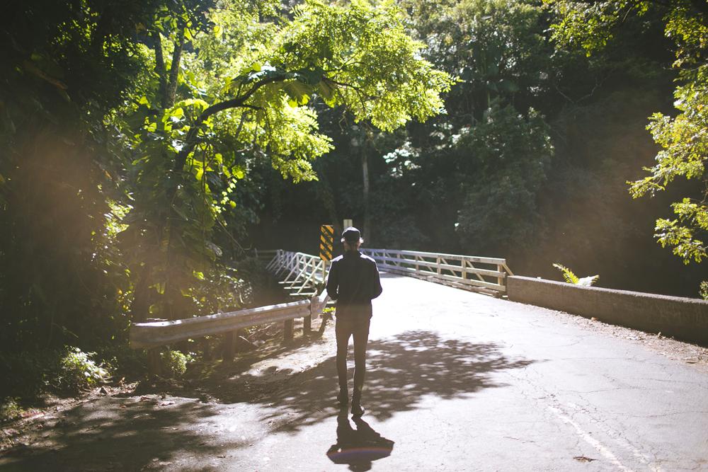 hawaii-waterfalls_019.jpg