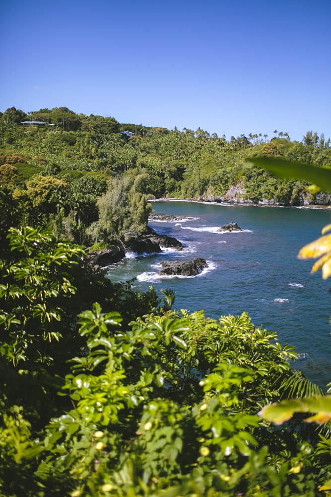 hawaii-waterfalls_023.jpg