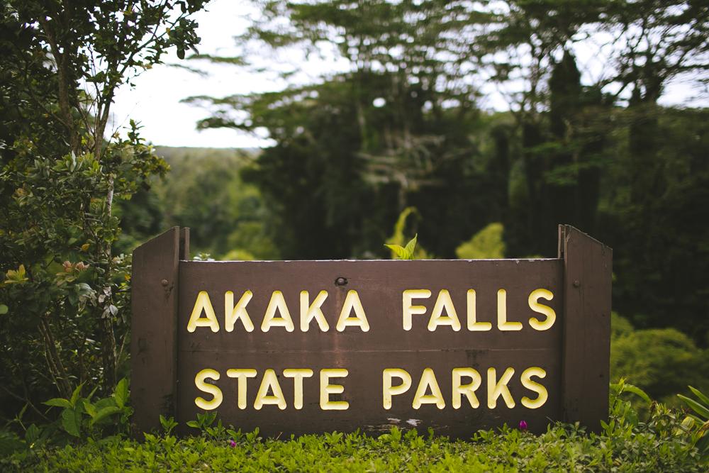 hawaii-waterfalls_025.jpg