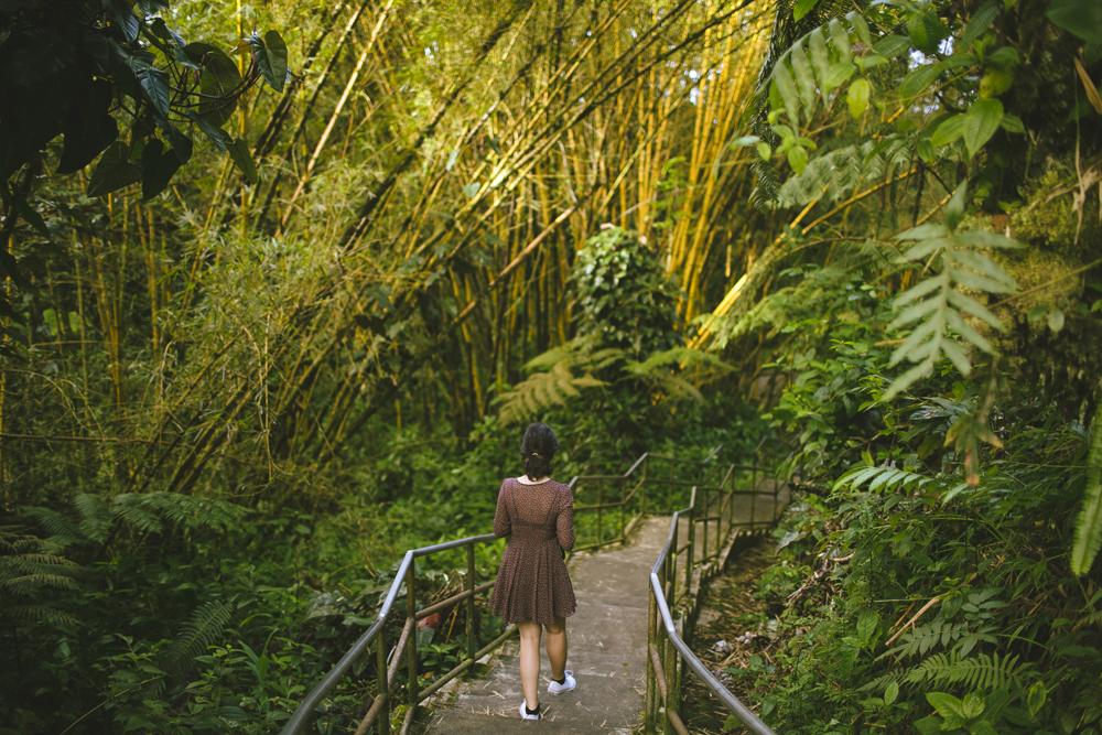 hawaii-waterfalls_030.jpg