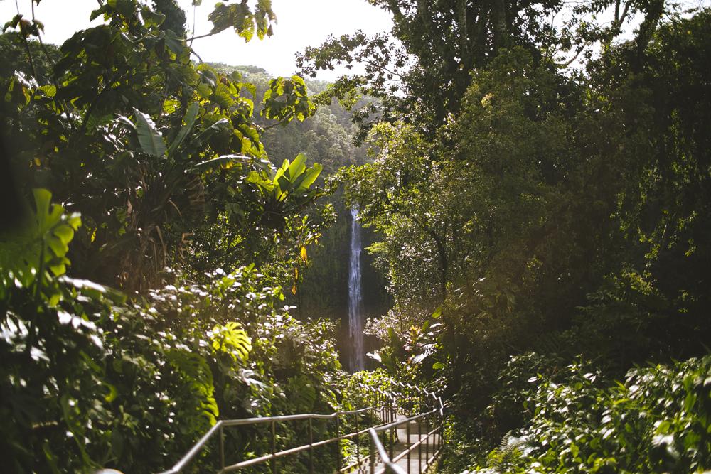 hawaii-waterfalls_032.jpg