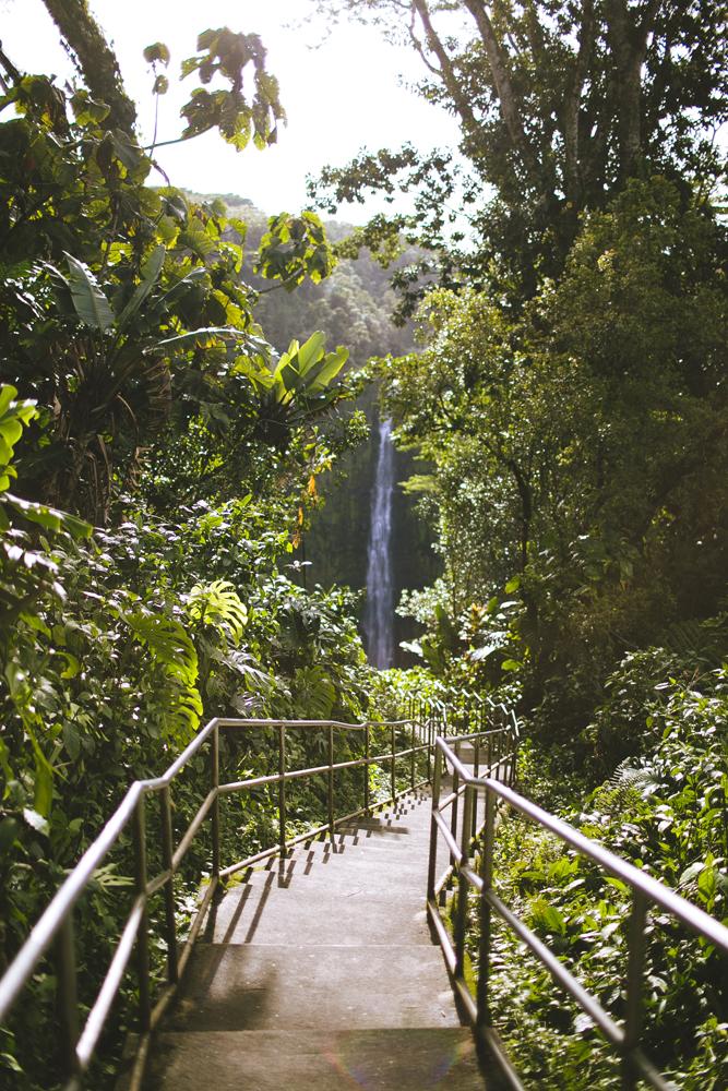 hawaii-waterfalls_034.jpg