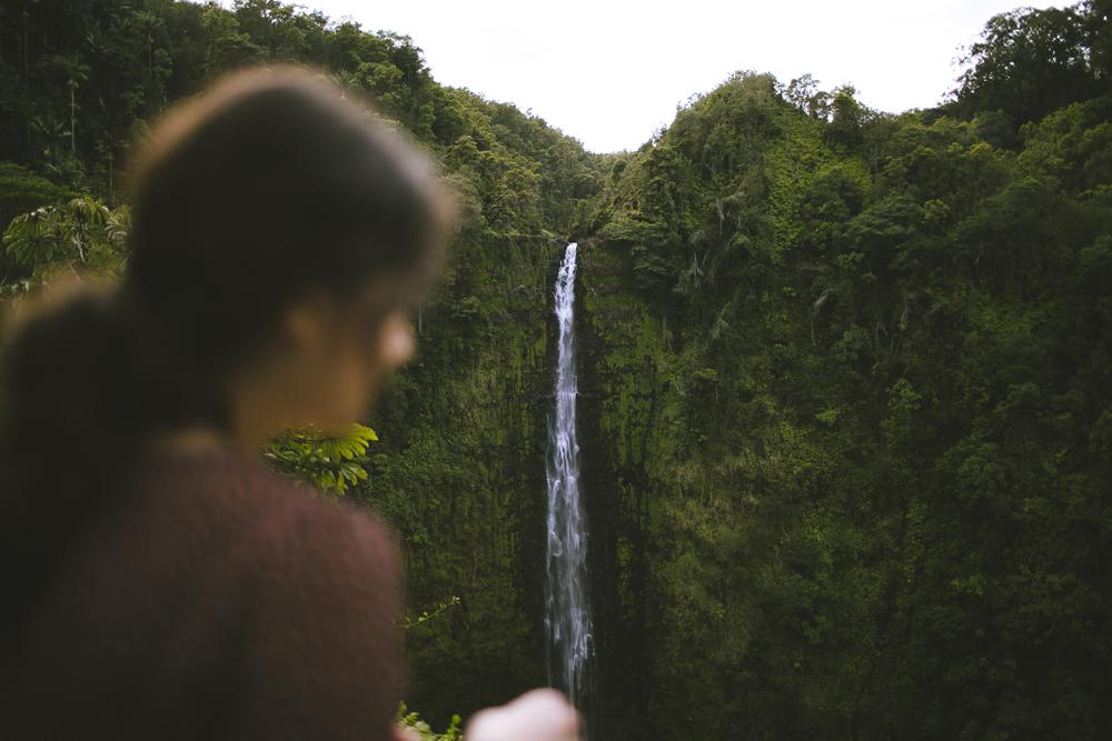 hawaii-waterfalls_043.jpg