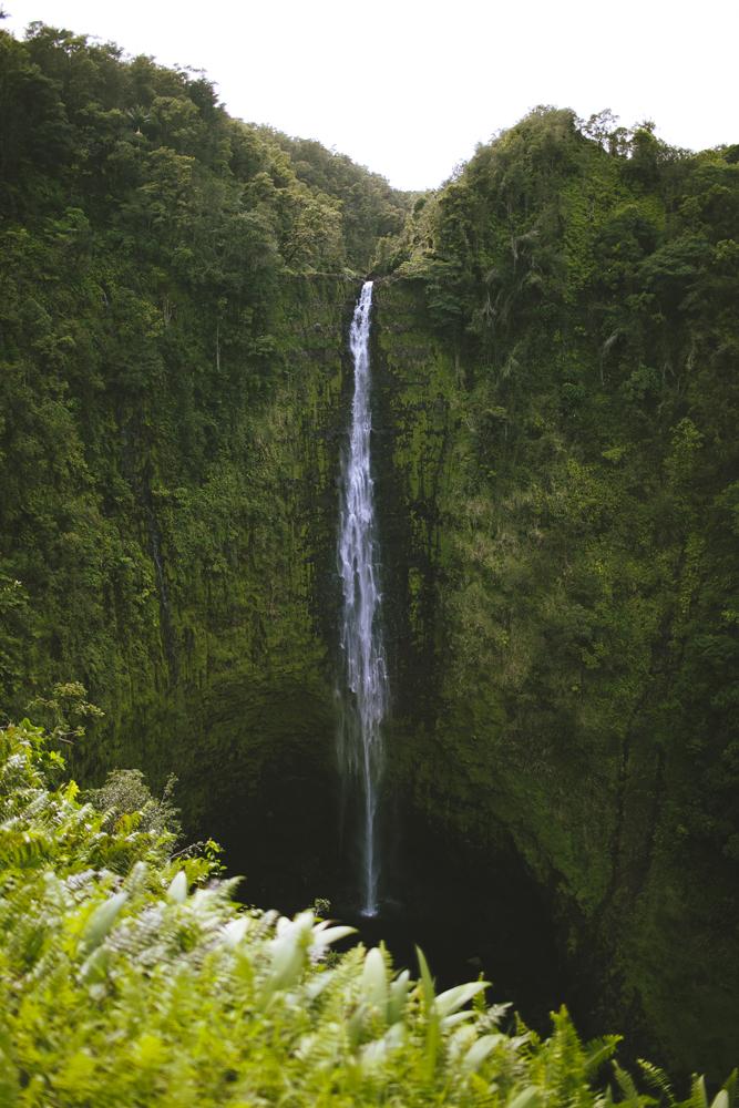 hawaii-waterfalls_044.jpg