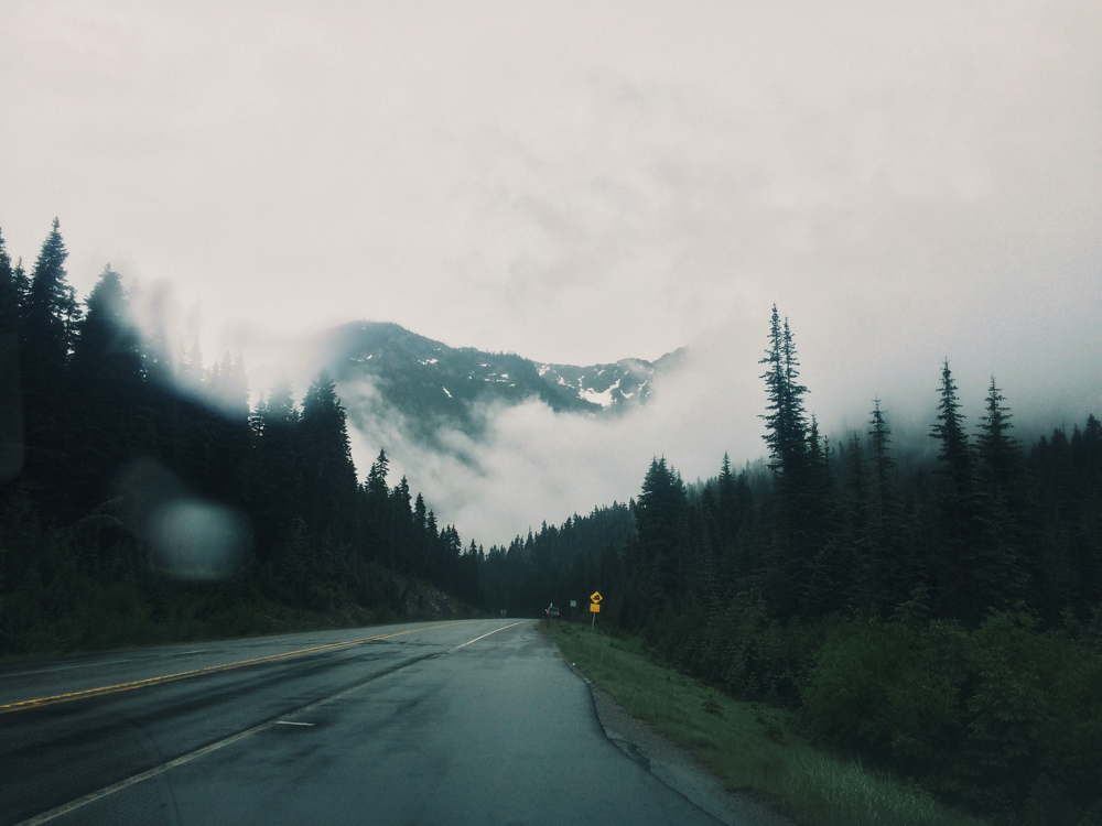 The road through North Cascades National Park.