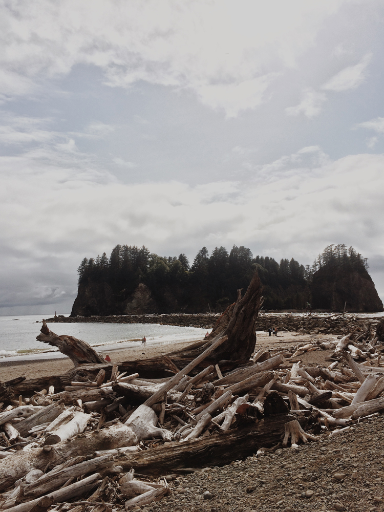 Driftwood at La Push.