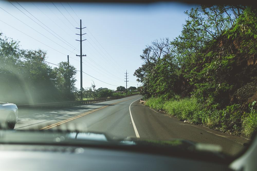 kauai_10.jpg