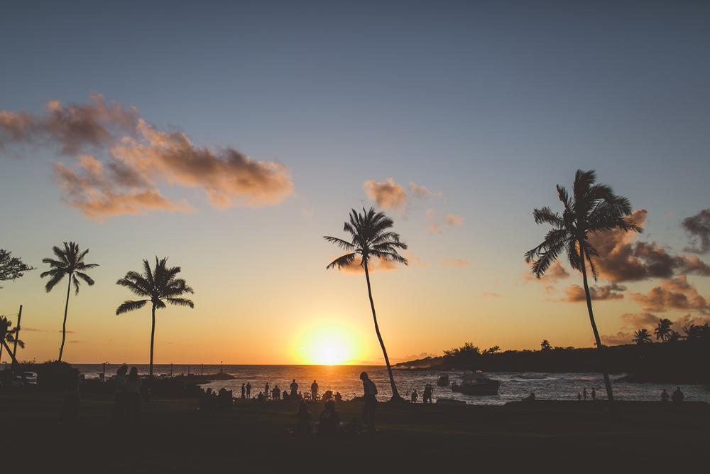 kauai_14.jpg