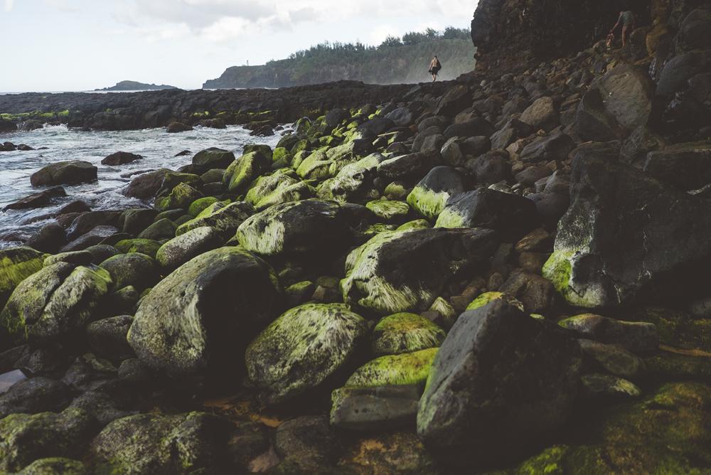 kauai_22.jpg