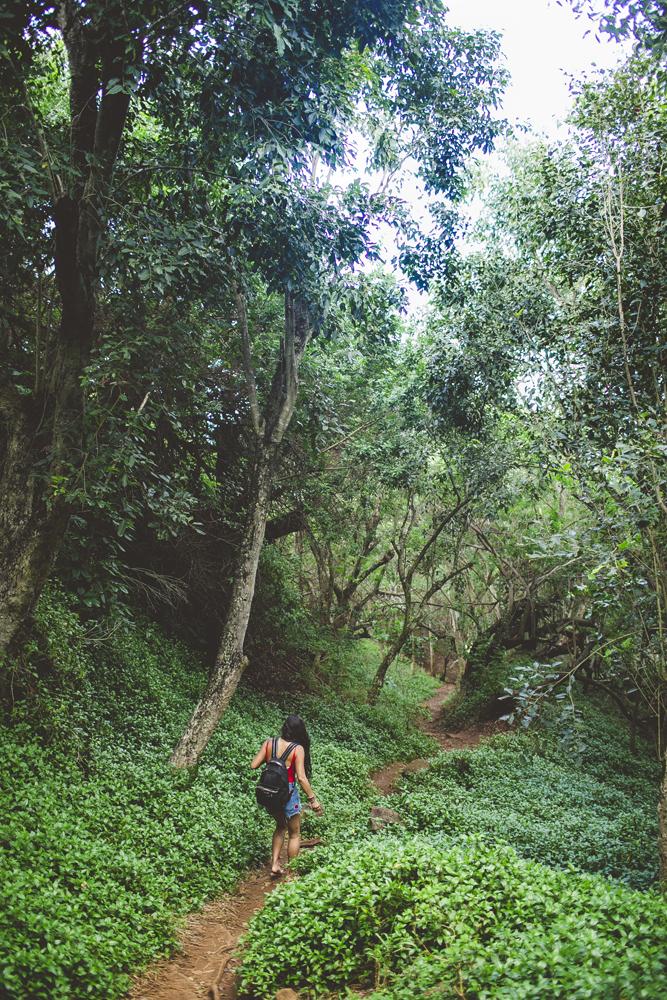 kauai_21.jpg