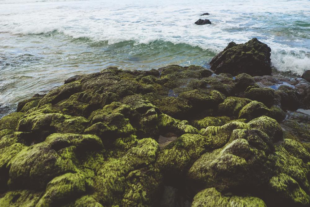 kauai_24.jpg