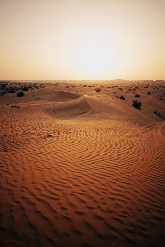 Spending the afternoon watching the sun go down at the Dubai Desert.
