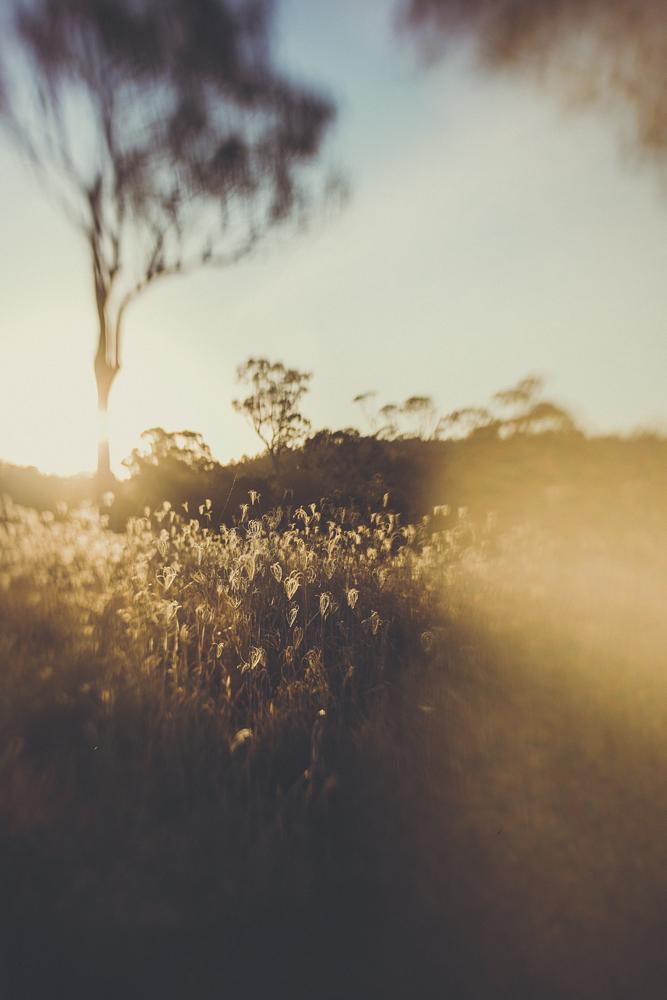 julia trotti sol 45_16.jpg