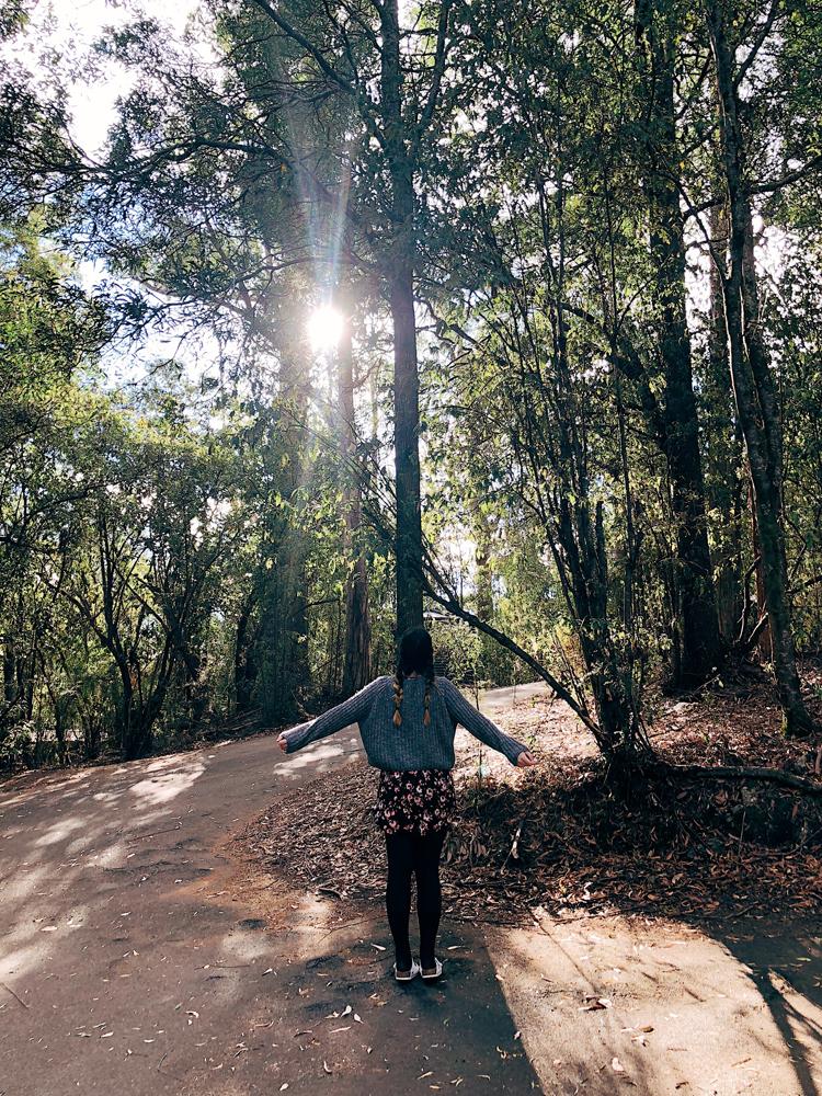 tasmania-instagram-julia-trotti_07.jpg