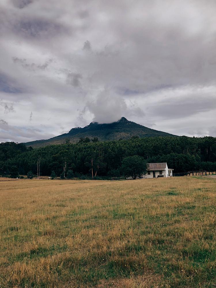 tasmania-instagram-julia-trotti_09.jpg