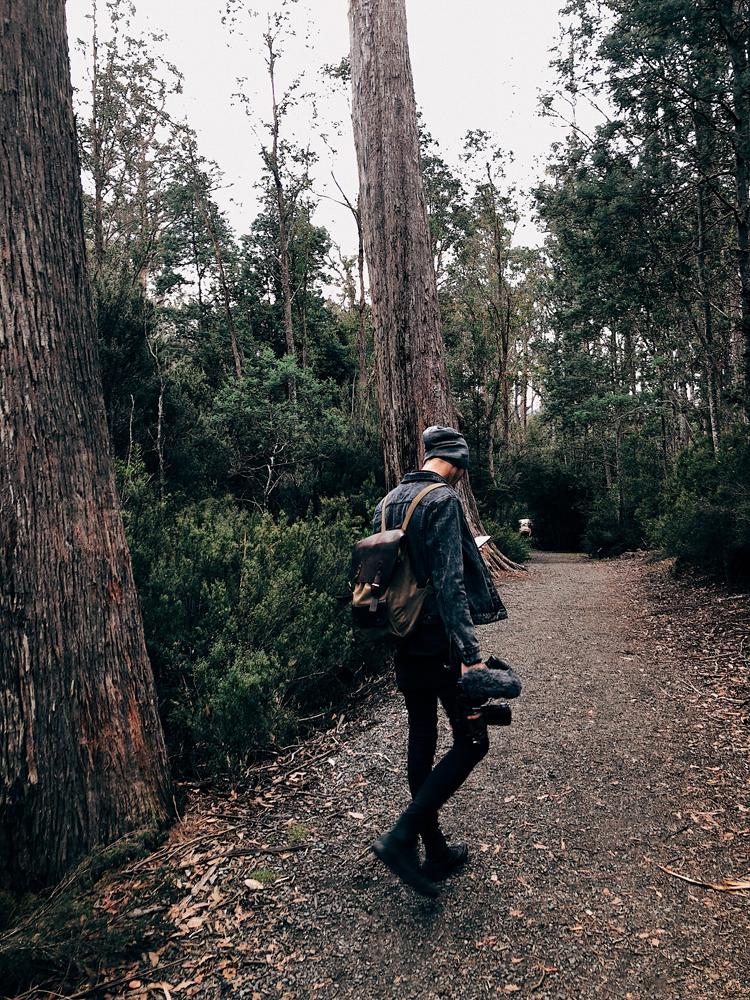 tasmania-instagram-julia-trotti_13.jpg