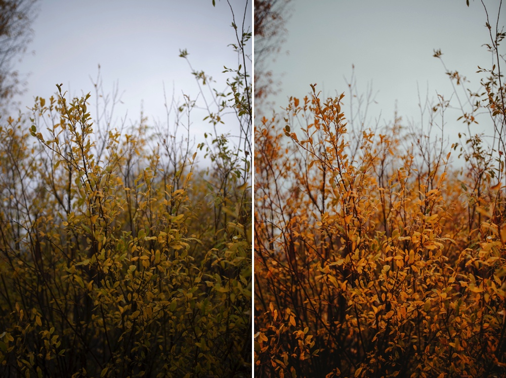 before // after - edited with my   Amalfi Lightroom Preset