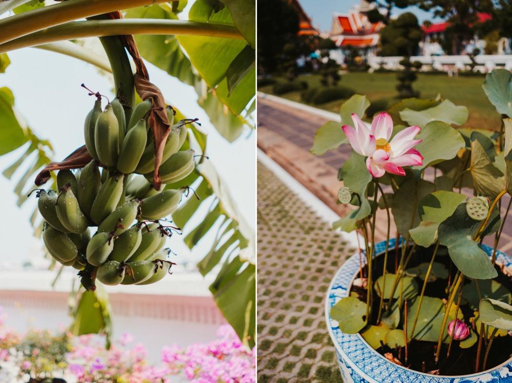 sonya7iii_bangkok_05.jpg