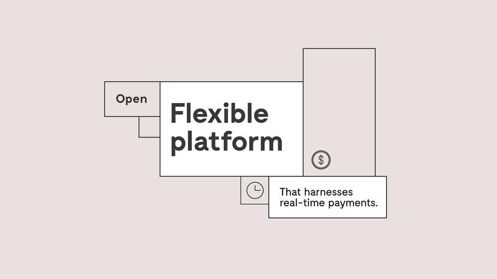 NewPaymentsPlatform_BrandCaseStudy4.jpg