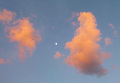 Moon skies.jpg