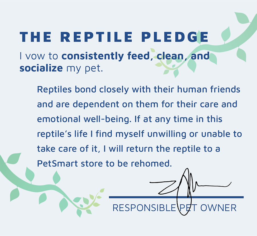 pledge2_toprint.png
