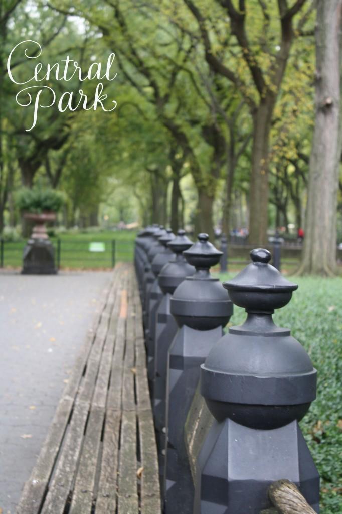 Central-Park-pic-682x1024.jpg