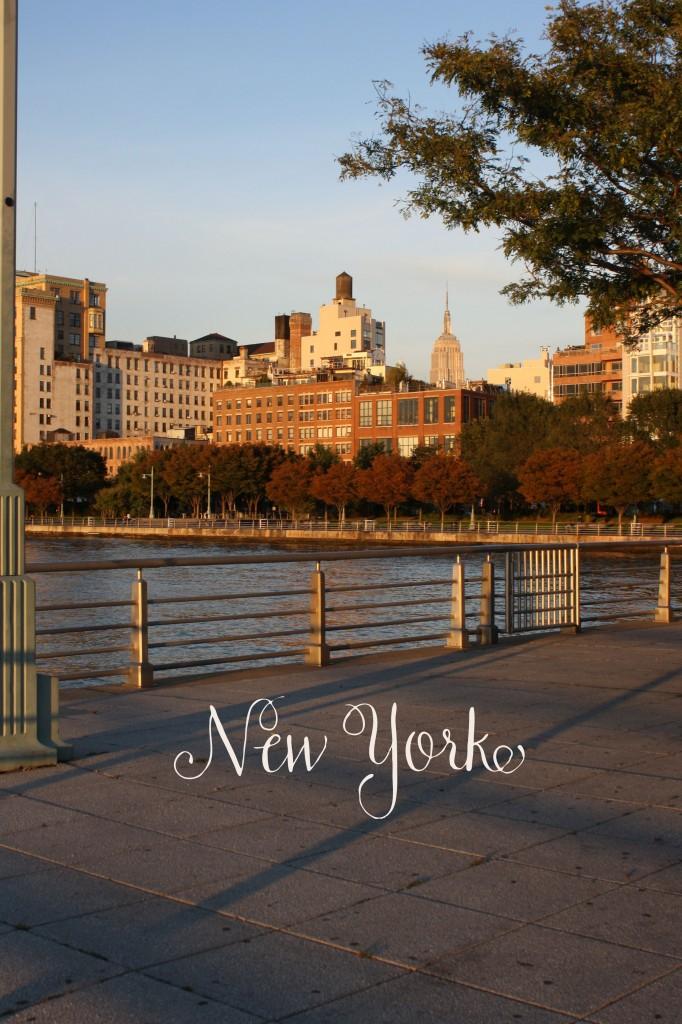 New-York-photo-682x1024.jpg