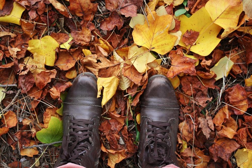 Fall-feet_heatherbyhand.jpg