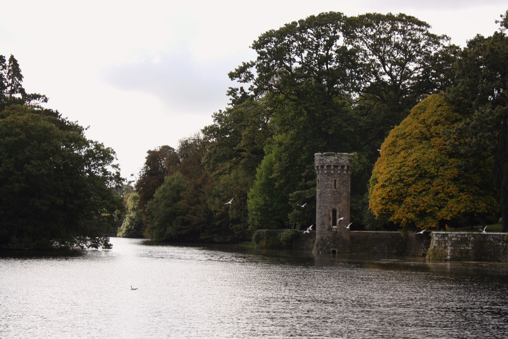 Johnstown-Castle-lake_heatherbyhand.jpeg